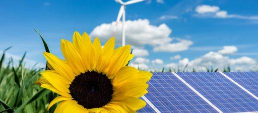 Solarbausätze – Experimentieren mit der Kraft der Sonne